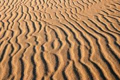 Duinen bij zonsopganglandschap Stock Foto