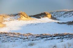 Duinen in de winter Royalty-vrije Stock Afbeeldingen