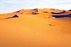 Duinen in de woestijn van de Sahara Stock Foto