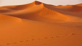 Duinen in de woestijn van Marokko stock afbeeldingen