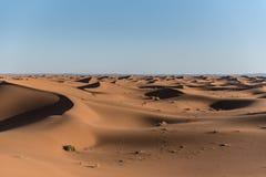 Duinen in de woestijn van de Sahara, Marokko royalty-vrije stock afbeeldingen