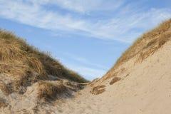 Duinen in Denemarken Royalty-vrije Stock Afbeelding