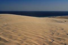 Duinen dichtbij de Indische Oceaan Stock Afbeelding