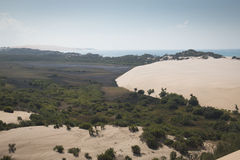 Duinen en bos op de Bazaruto-Eilanden Stock Afbeeldingen