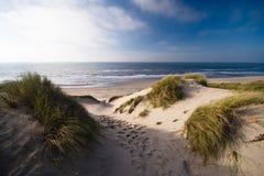 Duinen en oceaan Stock Fotografie
