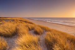 Duinen en strand bij zonsondergang op Texel-eiland, Nederland royalty-vrije stock foto's