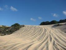 Duinen en woestijn in Geboorte, RN, Brazilië Stock Foto's