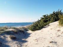 Duinen, gras, strand en overzees Royalty-vrije Stock Afbeeldingen