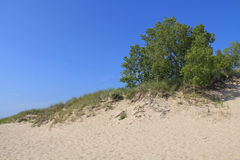 Duinen in Ludington-het Park van de Staat in Michigan Stock Fotografie