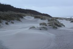 Duinen met gras bij de kust van de Noordzee in Zeeland in Nederland royalty-vrije stock foto's