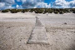 Duinen met weg bij de Deense Noordzeekust Stock Foto's