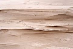 Duinen op Amrum Royalty-vrije Stock Afbeeldingen