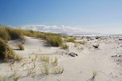 Duinen op een geïsoleerdr strand royalty-vrije stock fotografie