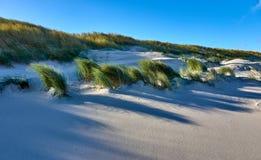 Duinen op het eiland van wangerooge in de Noordzee in Duitsland stock afbeeldingen