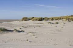 Duinen op Vlieland, dyn på Vlieland arkivbild