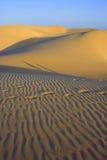 Duinen shadow1 royalty-vrije stock fotografie
