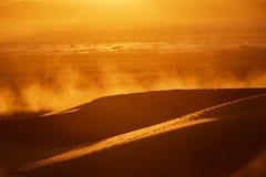 duinen, stof, en backlight bij schemer in de woestijn stock foto's