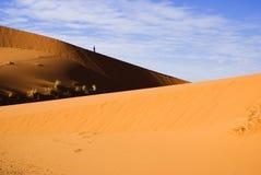 Duinen van de Sahara Stock Foto