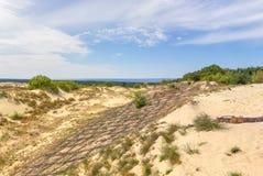 Duinen van het Curonian-Spit Kaliningrad Rusland stock afbeelding