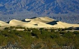 Duinen van het Mesquite de Vlakke Zand in Doodsvallei Stock Foto's
