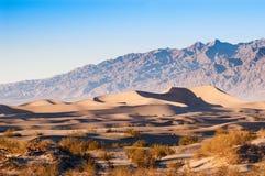 Duinen van het Mesquite de Vlakke Zand in het Nationale Park van de Doodsvallei, CA, de V.S. Stock Foto's