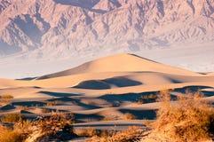 Duinen van het Mesquite de Vlakke Zand in het Nationale Park van de Doodsvallei, CA, de V.S. Royalty-vrije Stock Foto's