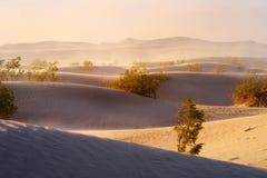 Duinen van het Mesquite de Vlakke Zand tijdens zandstorm, het Nationale Park van de Doodsvallei, Californië Royalty-vrije Stock Foto's
