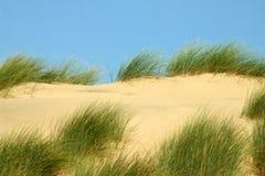 Duinen van het zand 1 Royalty-vrije Stock Afbeelding