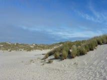 Duinen van het zand 1 jpg Royalty-vrije Stock Foto