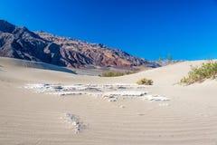 Duinen van het Zand van Mesquite de Vlakke Stock Fotografie
