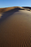 Duinen van het Zand van het koraal de Roze Stock Afbeeldingen
