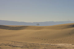 Duinen van het Zand van Mesquite de Vlakke Royalty-vrije Stock Fotografie