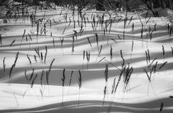 Duinen van Sneeuwkristallen Royalty-vrije Stock Foto
