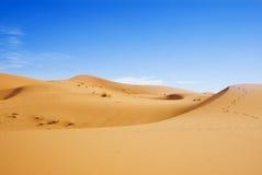 Duinen van woestijn Stock Foto