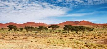 Duinen van Woestijn Namib royalty-vrije stock afbeeldingen