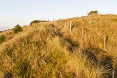Duinen Vlieland op, dune a Vlieland fotografia stock libera da diritti