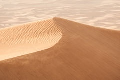 Duinen in woestijn Royalty-vrije Stock Afbeeldingen