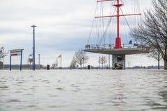 Duisburg, Duitsland - Januari 08 2017: De rivier Rijn overstroomt Muehlenweide Stock Fotografie