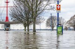 Duisburg, Duitsland - Januari 08 2017: De rivier Rijn overstroomt Muehlenweide Stock Foto