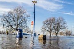 Duisburg, Duitsland - Januari 08 2017: De rivier Rijn overstroomt Muehlenweide Stock Afbeeldingen