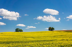 Duits landbouwlandschap Royalty-vrije Stock Foto's