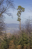 Duits landschap Odenwald Royalty-vrije Stock Foto