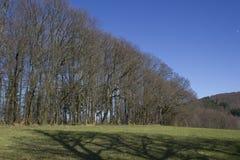 Duits landschap Odenwald Stock Afbeeldingen