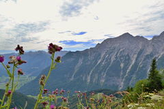 Duitse Alpen - Berchtesgaden Royalty-vrije Stock Afbeeldingen