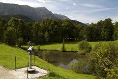 Duitse Bos het Bekijken van Alpen Vlek stock foto's