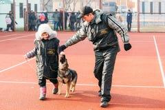 Duitse herderhond opleiding in Regionale Gomel Stock Afbeeldingen
