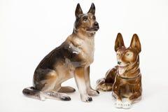 Duitse herders Royalty-vrije Stock Afbeeldingen