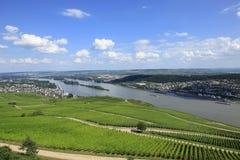 Duitse wijngaarden Royalty-vrije Stock Afbeelding