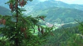 duitsland Gebied ` Zwarte Bos` Sterke wind in de bergen stock footage