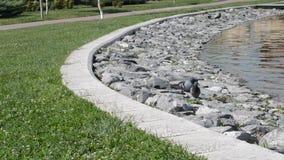 Duiven die op de stenen dichtbij een vijver lopen stock footage